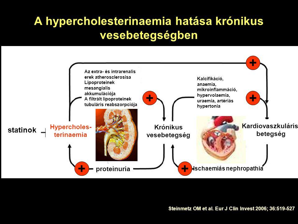 A hypercholesterinaemia hatása krónikus vesebetegségben