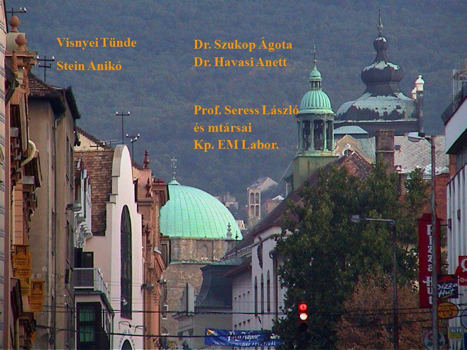 Visnyei Tünde Stein Anikó. Dr. Szukop Ágota. Dr. Havasi Anett. Prof. Seress László. és mtársai.