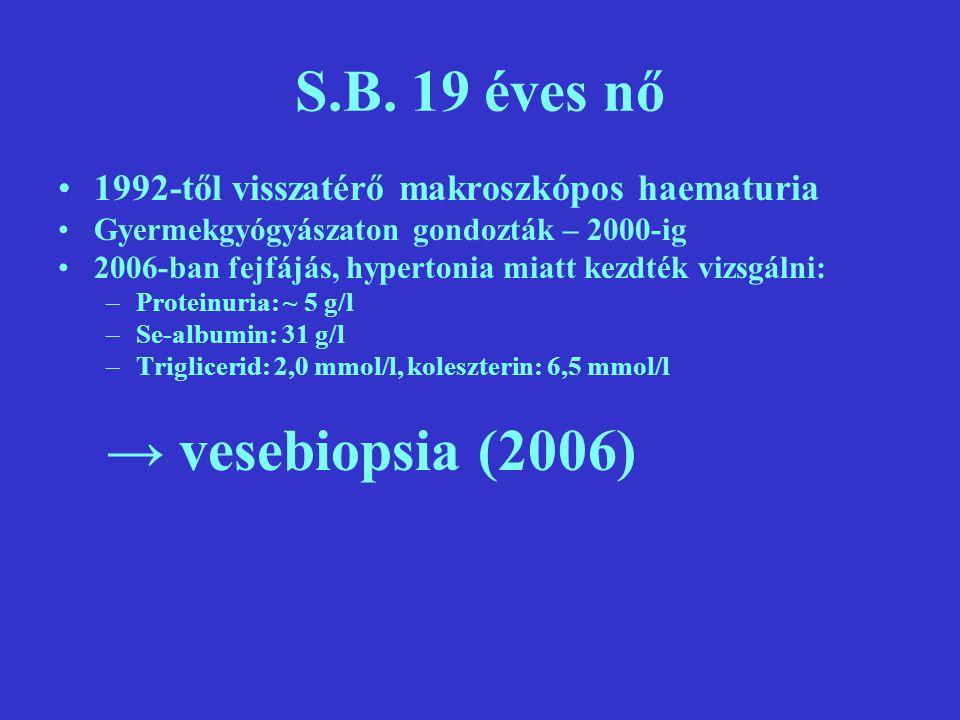 S.B. 19 éves nő → vesebiopsia (2006)