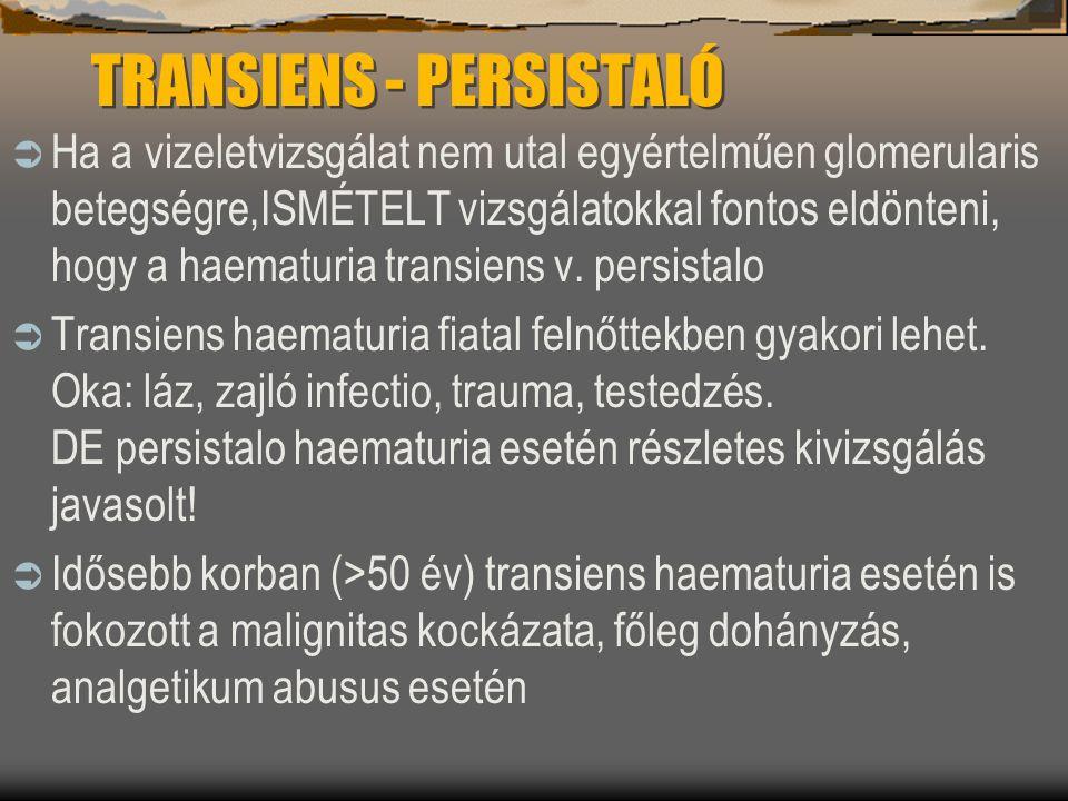 TRANSIENS - PERSISTALÓ