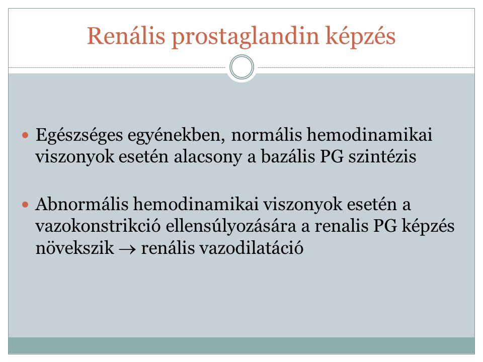 Renális prostaglandin képzés