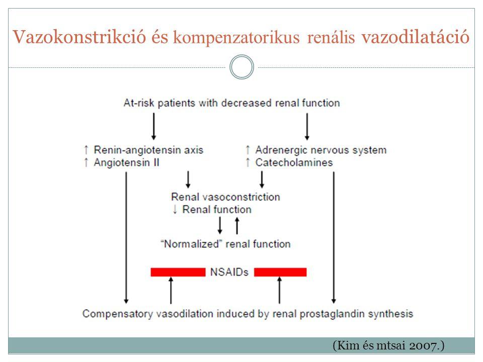 Vazokonstrikció és kompenzatorikus renális vazodilatáció