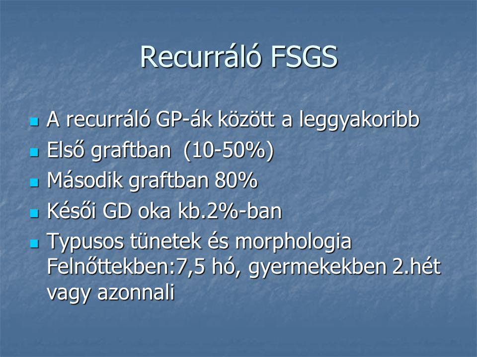 Recurráló FSGS A recurráló GP-ák között a leggyakoribb