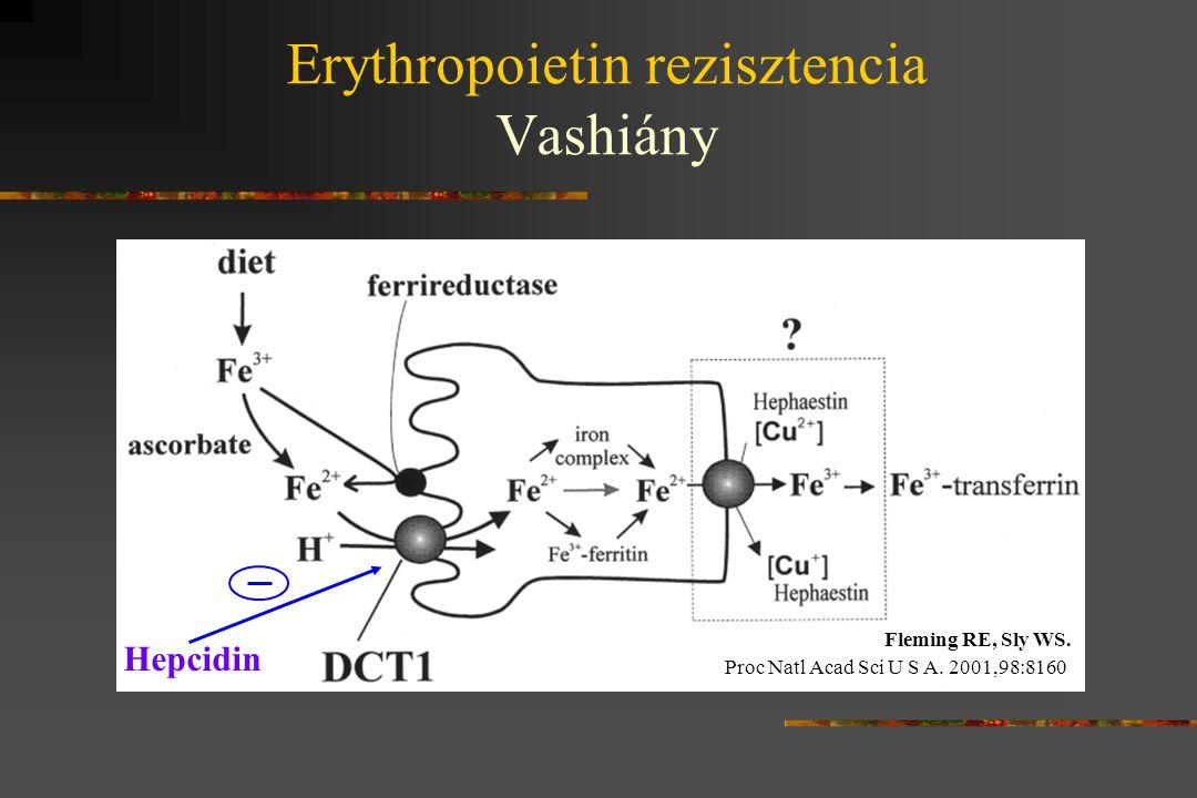 Erythropoietin rezisztencia Vashiány
