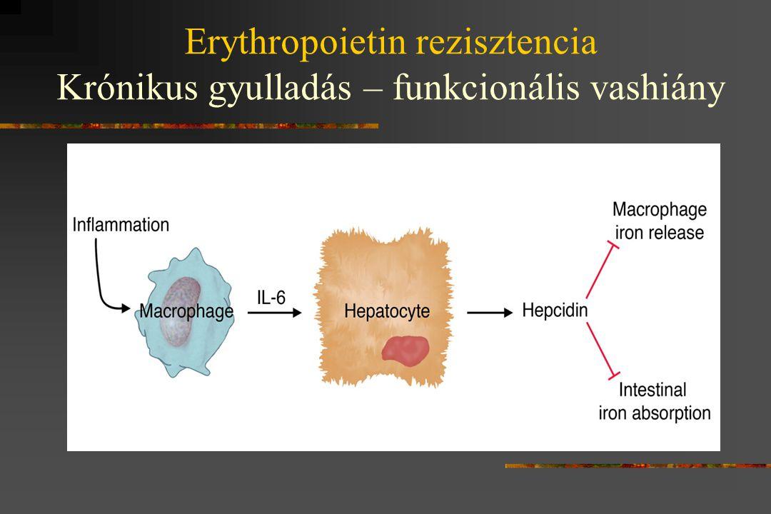 Erythropoietin rezisztencia Krónikus gyulladás – funkcionális vashiány
