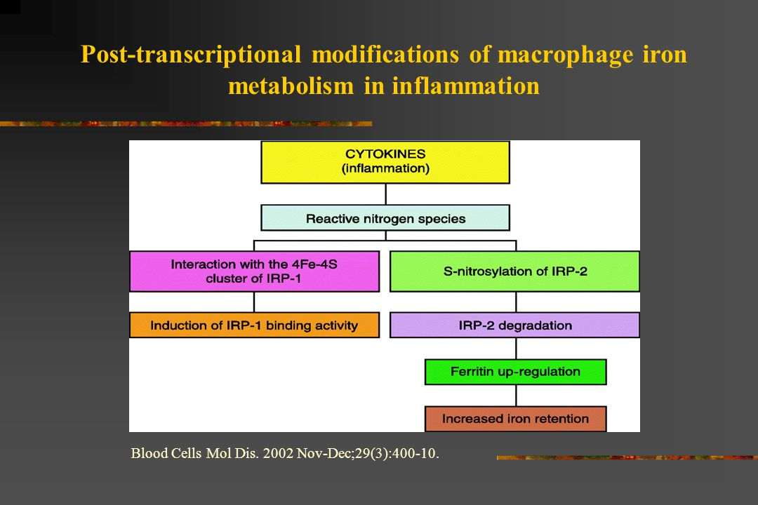 Post-transcriptional modifications of macrophage iron metabolism in inflammation