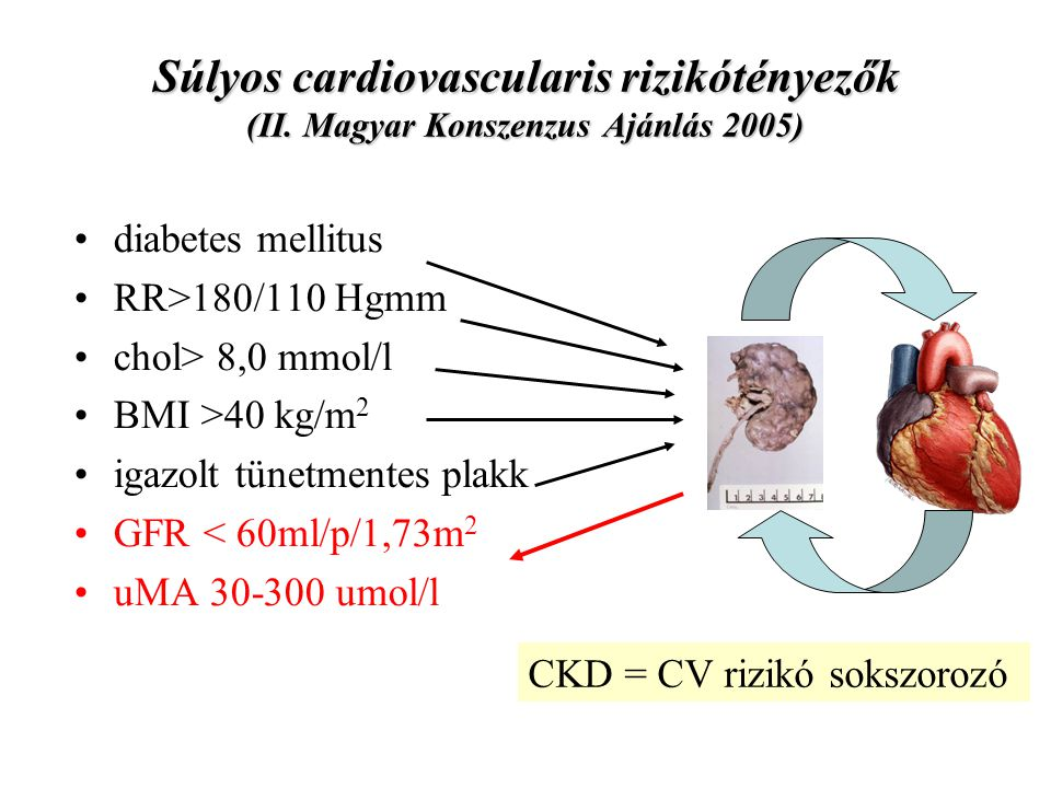 Súlyos cardiovascularis rizikótényezők (II