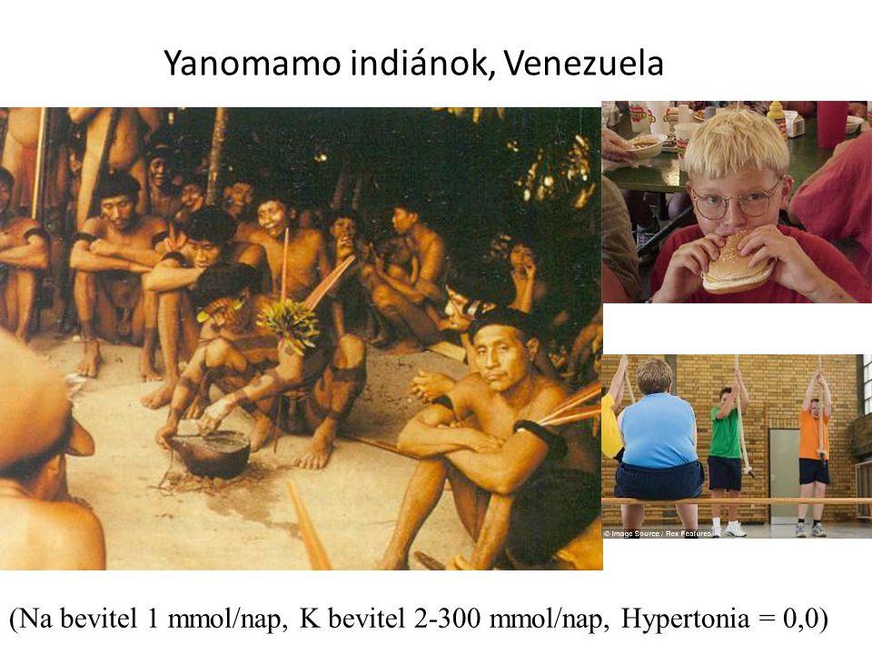 Yanomamo indiánok, Venezuela