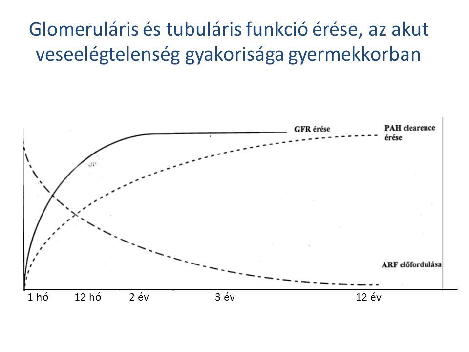 Glomeruláris és tubuláris funkció érése, az akut veseelégtelenség gyakorisága gyermekkorban