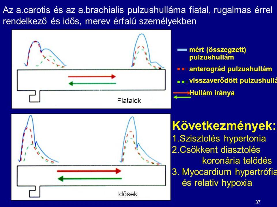 Az a.carotis és az a.brachialis pulzushulláma fiatal, rugalmas érrel rendelkező és idős, merev érfalú személyekben
