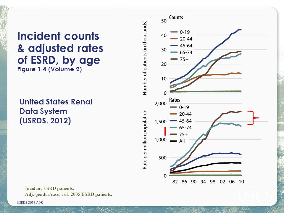 Incident counts & adjusted rates of ESRD, by age Figure 1.4 (Volume 2)