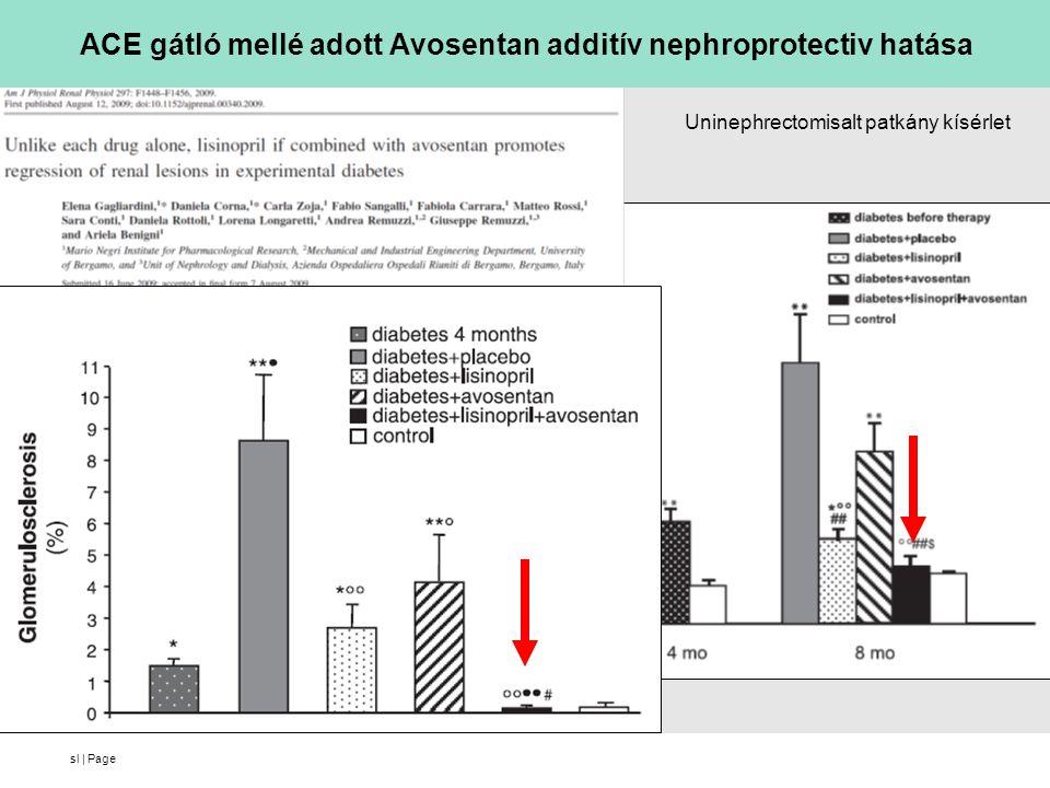 ACE gátló mellé adott Avosentan additív nephroprotectiv hatása