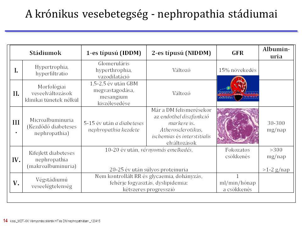A krónikus vesebetegség - nephropathia stádiumai