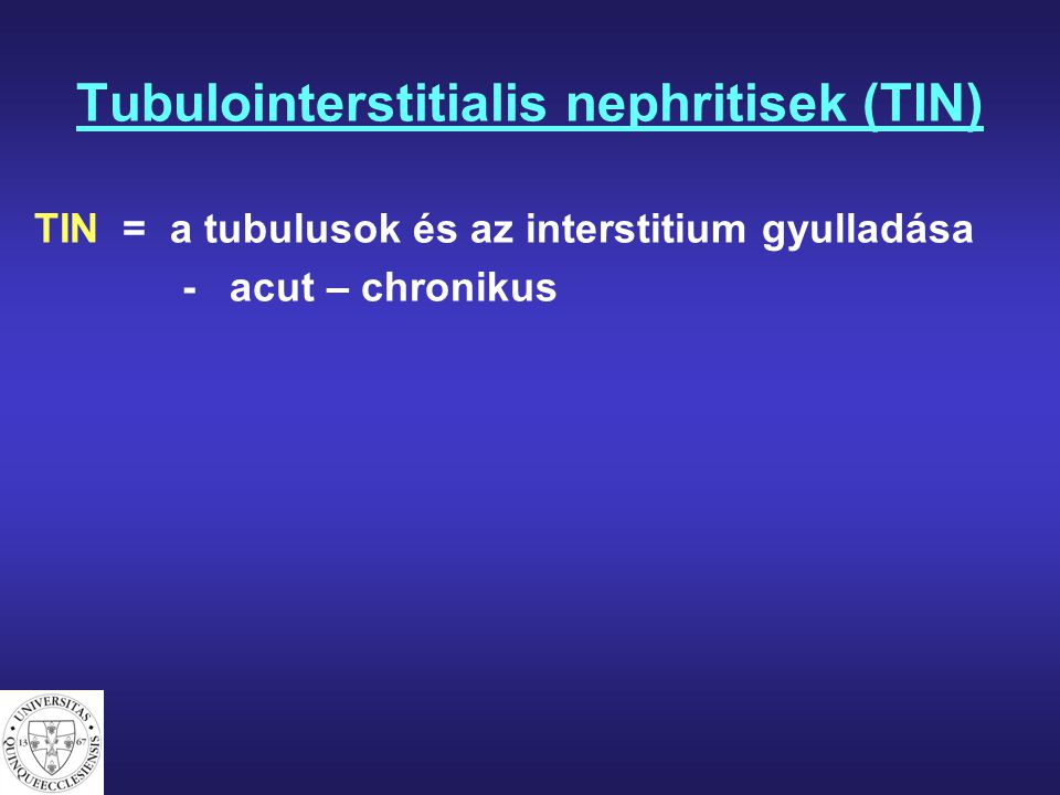 Tubulointerstitialis nephritisek (TIN)