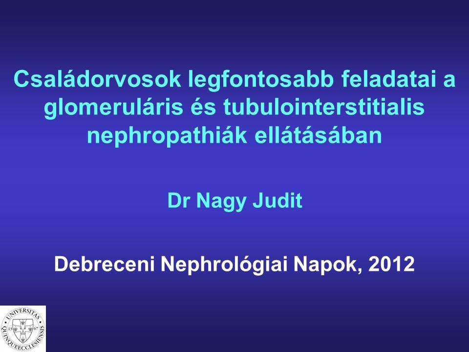 Debreceni Nephrológiai Napok, 2012