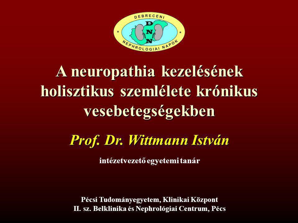 A neuropathia kezelésének holisztikus szemlélete krónikus