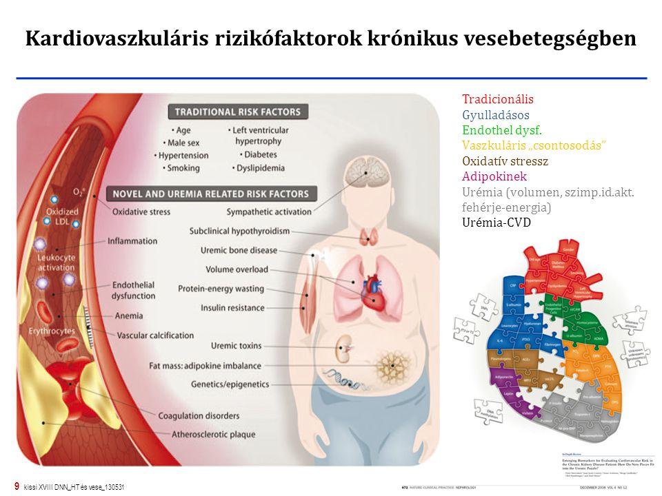 Kardiovaszkuláris rizikófaktorok krónikus vesebetegségben