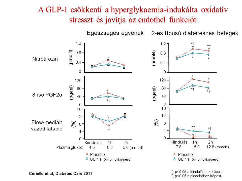 A GLP-1 csökkenti a hyperglykaemia-indukálta oxidatív stresszt és javítja az endothel funkciót