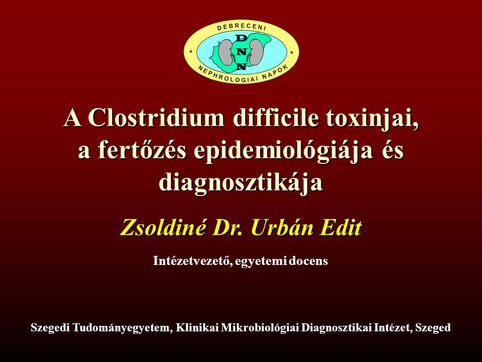 A Clostridium difficile toxinjai, a fertőzés epidemiológiája és