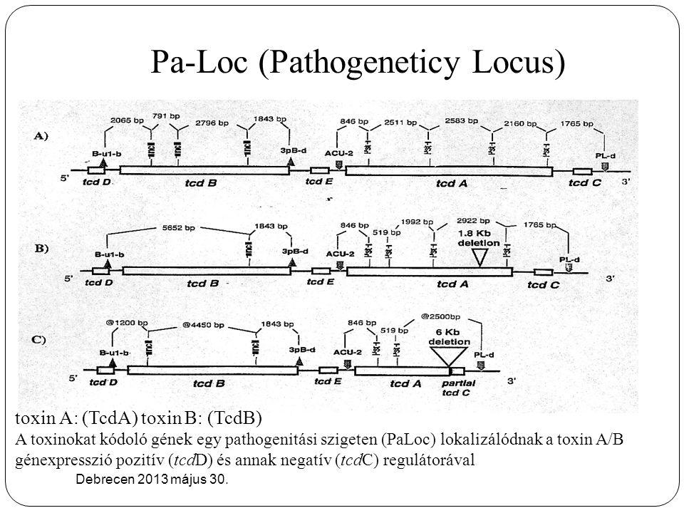 Pa-Loc (Pathogeneticy Locus)