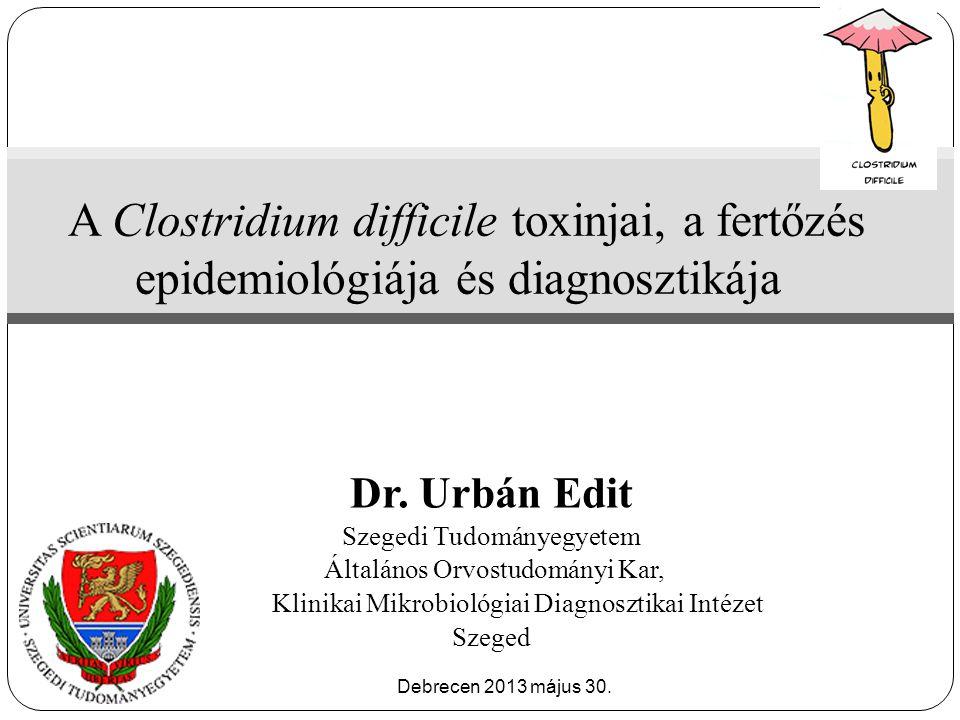 A Clostridium difficile toxinjai, a fertőzés epidemiológiája és diagnosztikája