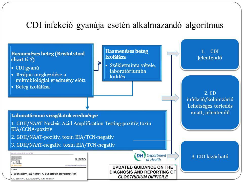 CDI infekció gyanúja esetén alkalmazandó algoritmus