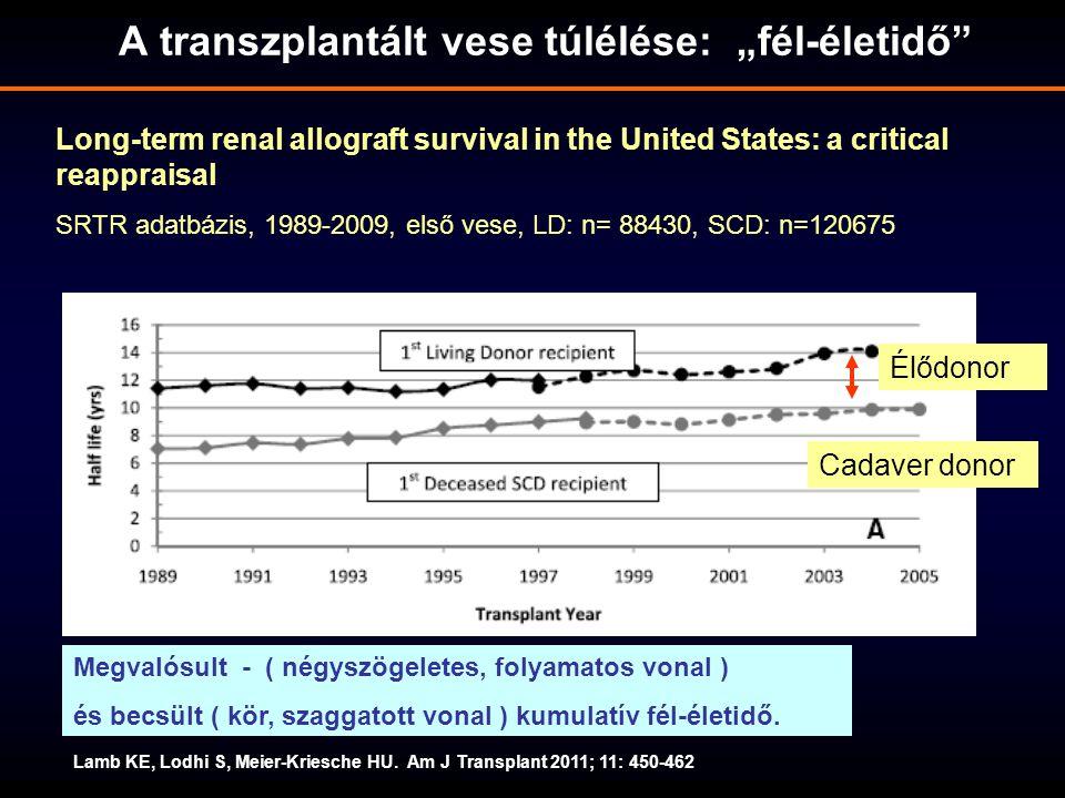 """A transzplantált vese túlélése: """"fél-életidő"""