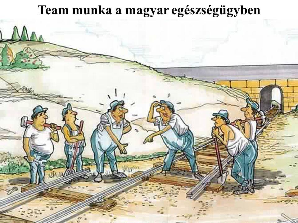 Team munka a magyar egészségügyben