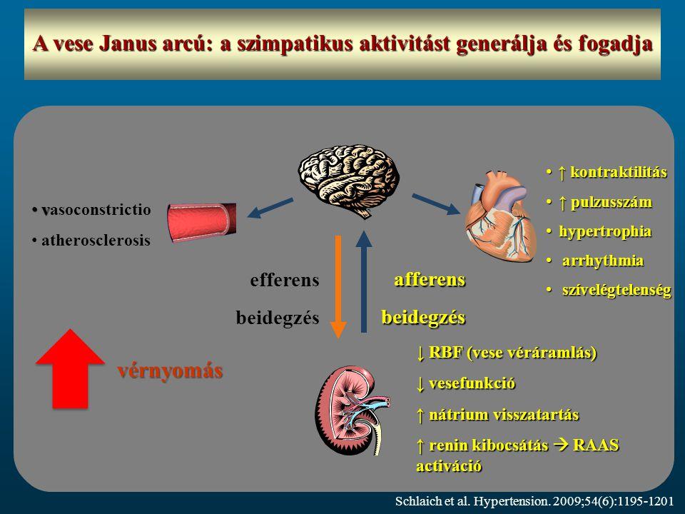 A vese Janus arcú: a szimpatikus aktivitást generálja és fogadja