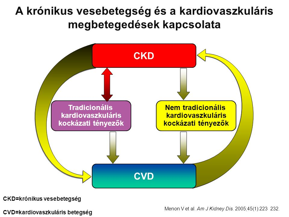 A krónikus vesebetegség és a kardiovaszkuláris megbetegedések kapcsolata
