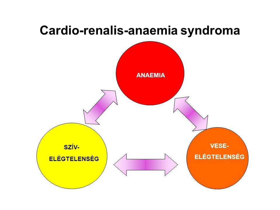 Cardio-renalis-anaemia syndroma
