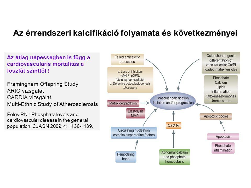 Az érrendszeri kalcifikáció folyamata és következményei