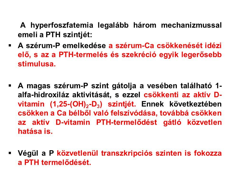 A hyperfoszfatemia legalább három mechanizmussal emeli a PTH szintjét: