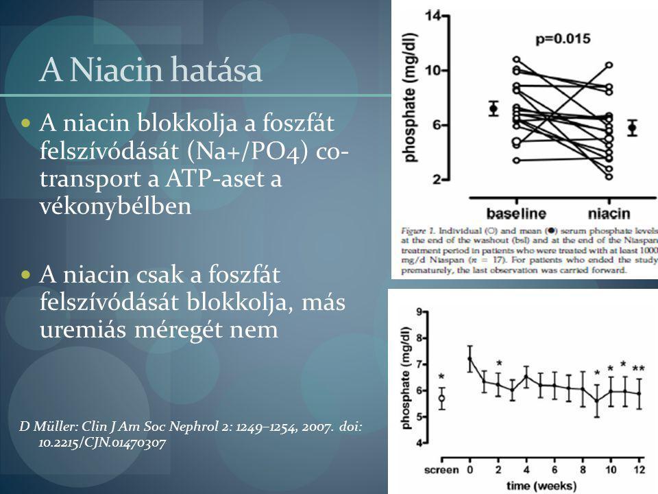 A Niacin hatása A niacin blokkolja a foszfát felszívódását (Na+/PO4) co- transport a ATP-aset a vékonybélben.