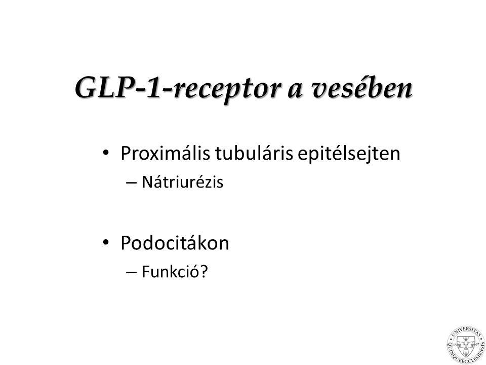 GLP-1-receptor a vesében