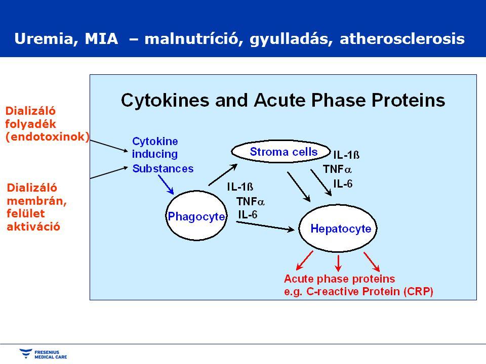 Uremia, MIA – malnutríció, gyulladás, atherosclerosis