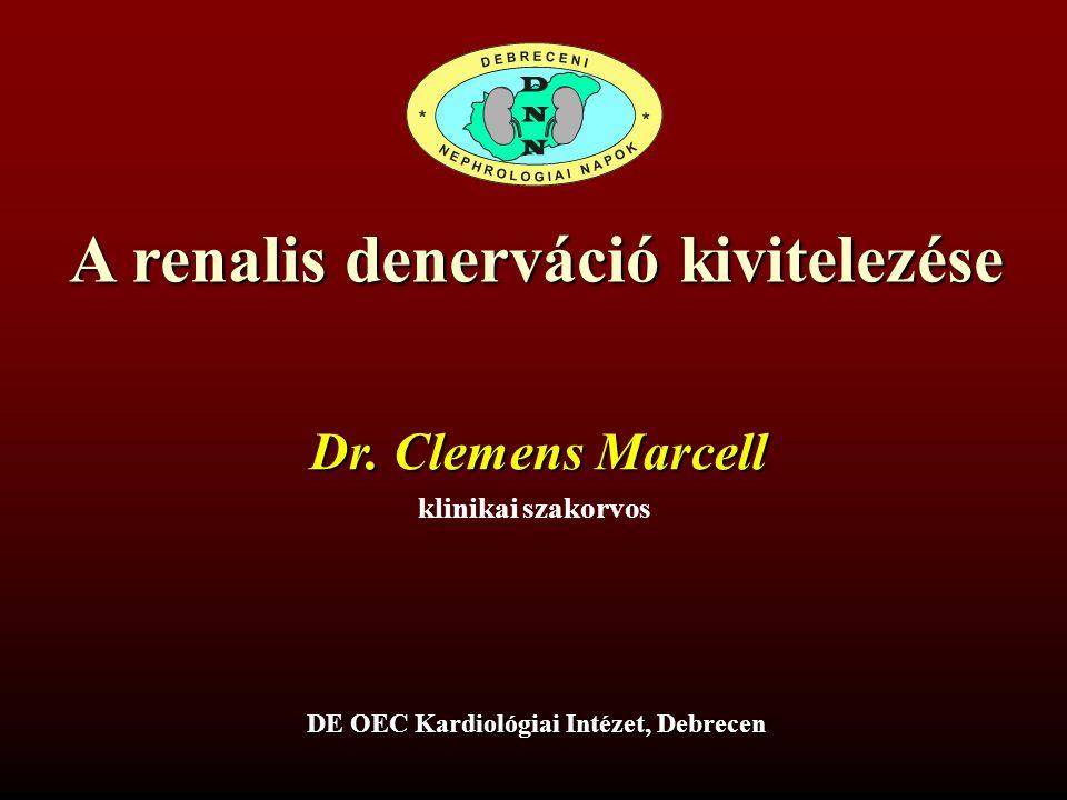 A renalis denerváció kivitelezése