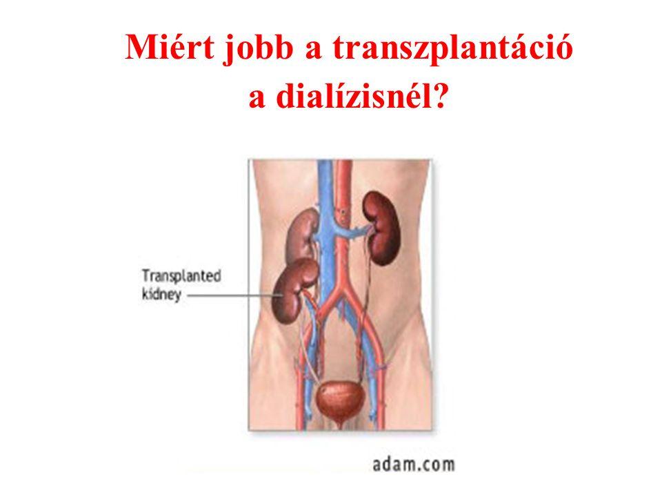 Miért jobb a transzplantáció