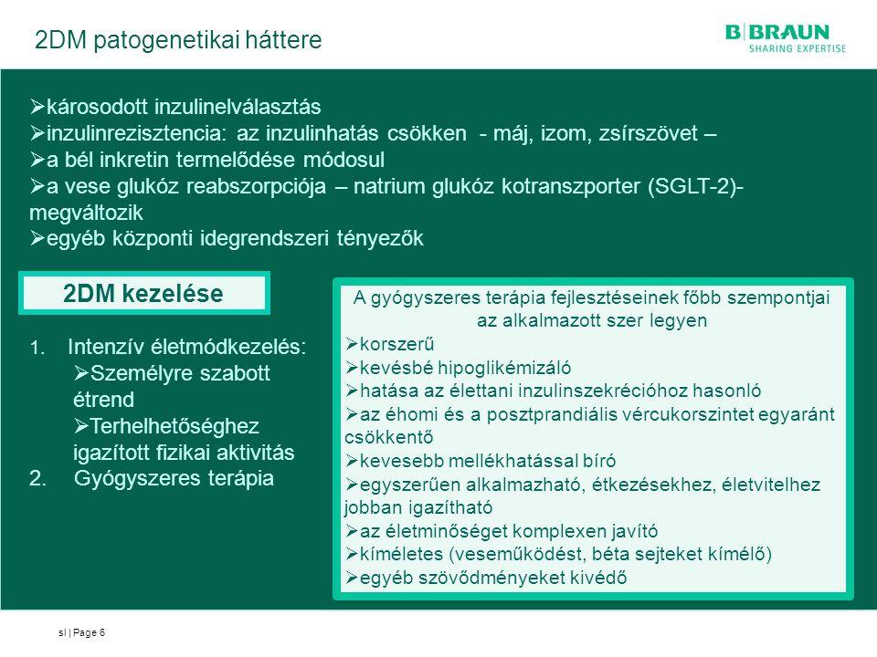 2DM patogenetikai háttere