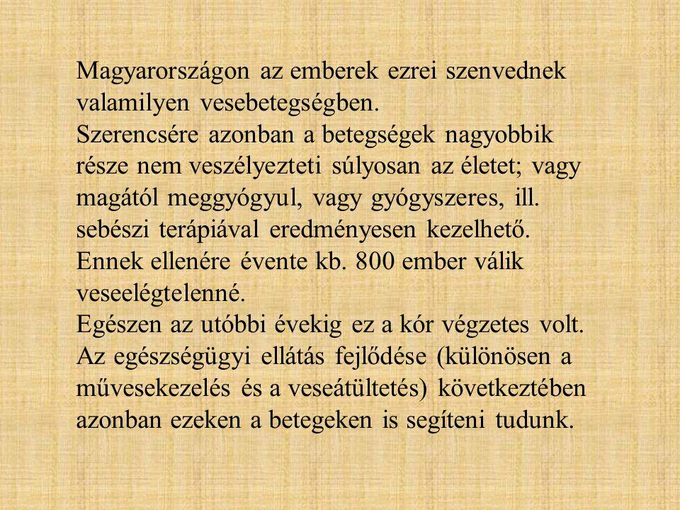 Magyarországon az emberek ezrei szenvednek valamilyen vesebetegségben.
