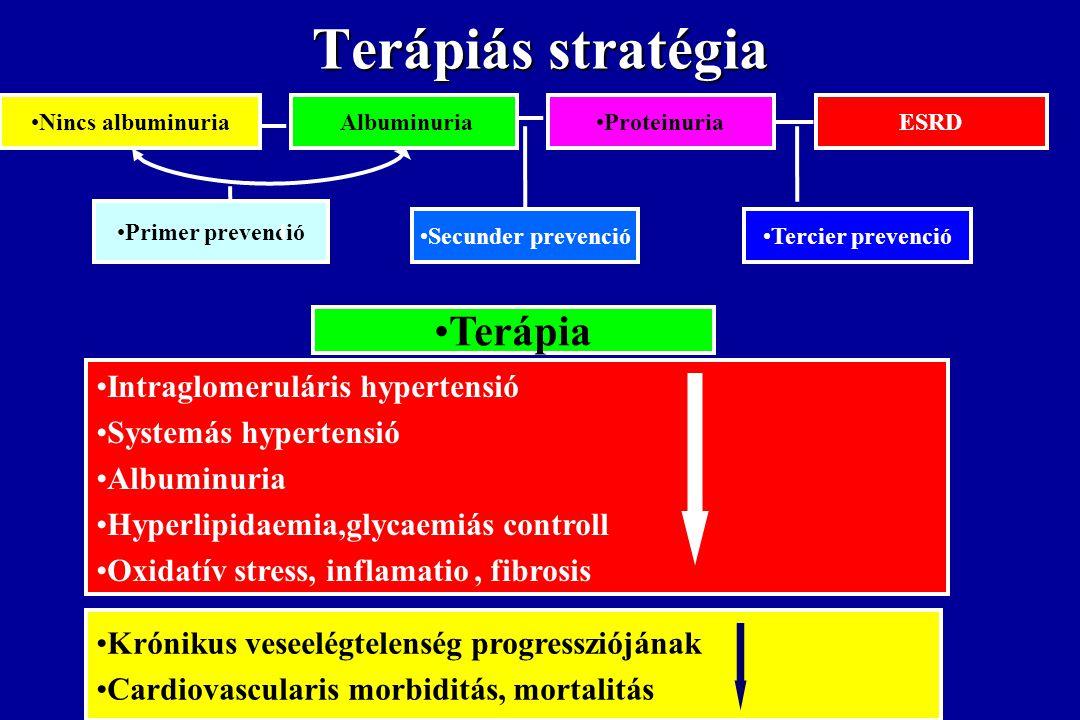 Terápiás stratégia Terápia Intraglomeruláris hypertensió