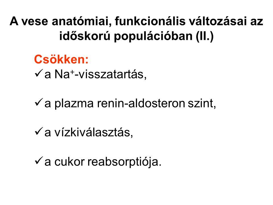 A vese anatómiai, funkcionális változásai az időskorú populációban (II
