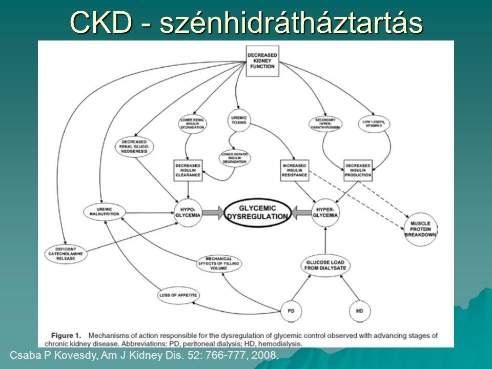 CKD - szénhidrátháztartás