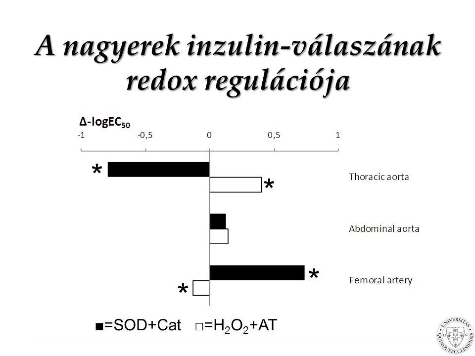A nagyerek inzulin-válaszának redox regulációja