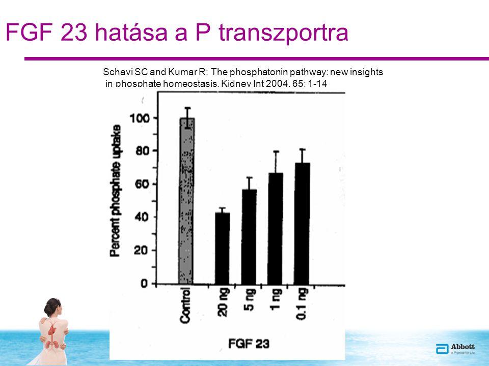 FGF 23 hatása a P transzportra