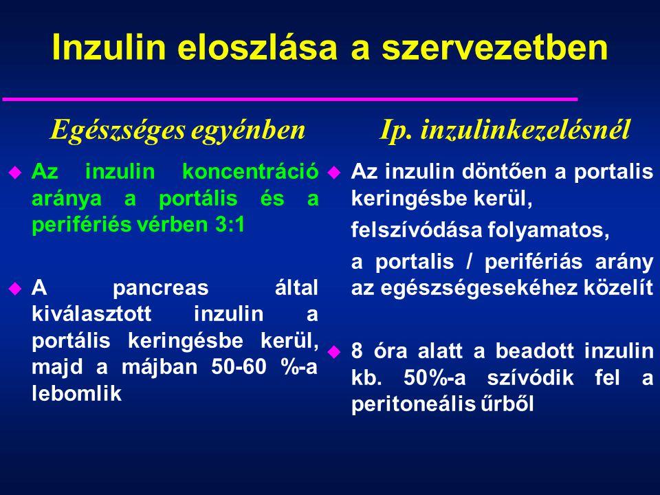 Inzulin eloszlása a szervezetben