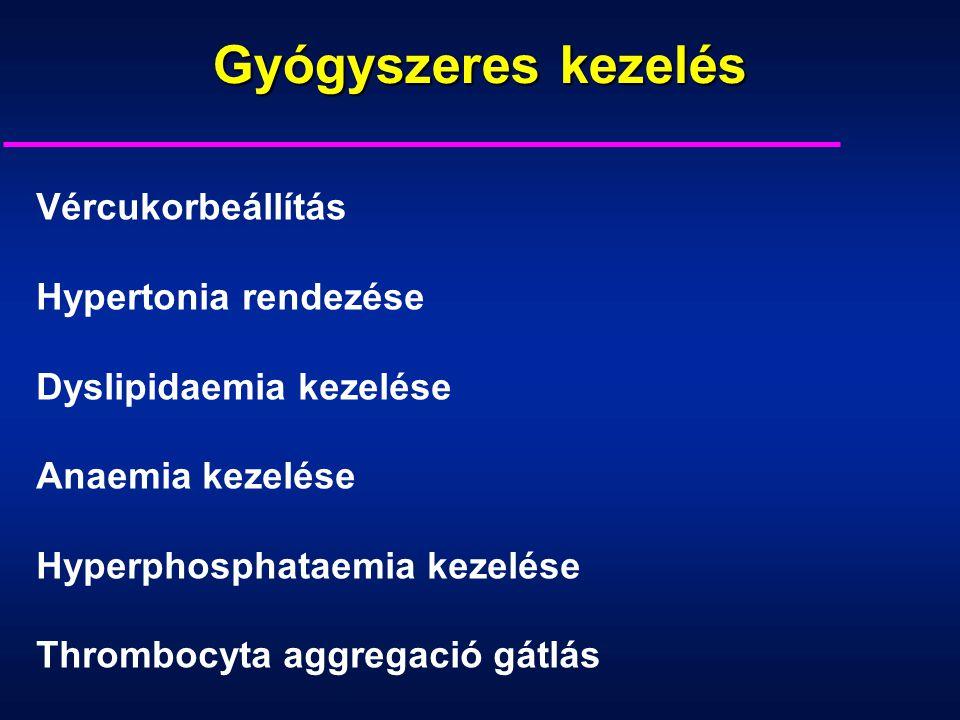 Gyógyszeres kezelés Vércukorbeállítás Hypertonia rendezése