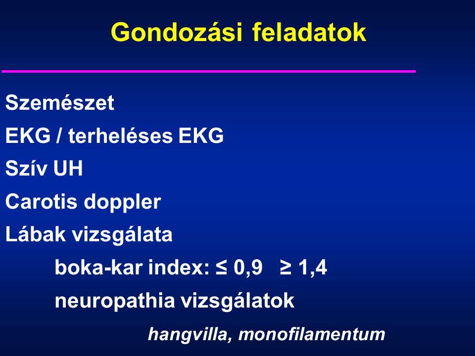 Gondozási feladatok Szemészet EKG / terheléses EKG Szív UH
