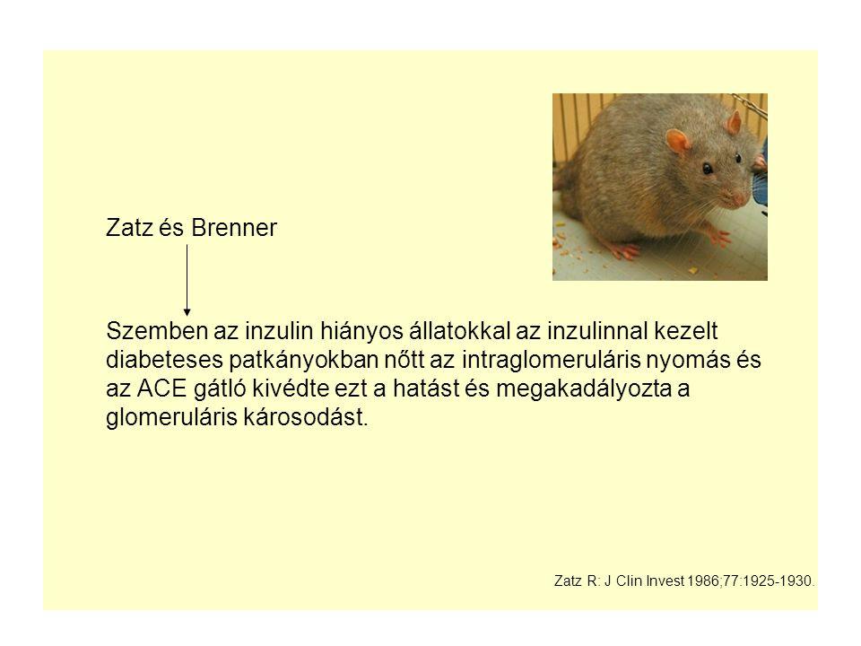 Zatz és Brenner