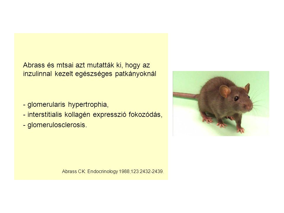 - glomerularis hypertrophia,